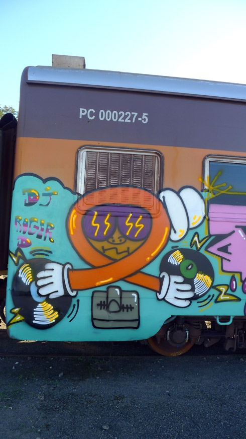 train-13-490x872